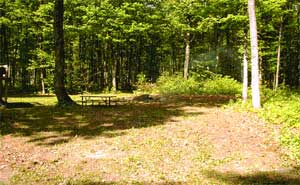 Campfire Area - Porcupine Lake Cottage Rental Available Year Round Up North in Gaylord, Michigan. Rent our cozy and clean cottage for the Weekend, Week, or more!